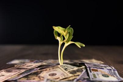 Prosperity Study Course